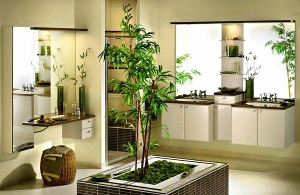 Best Plants For Bathrooms – 20 Indoor Plants For The Bathroom