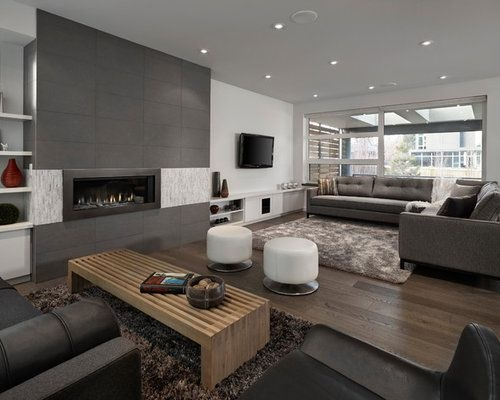 Grey Living Room Home Design Ideas Pictures Remodel And Decor