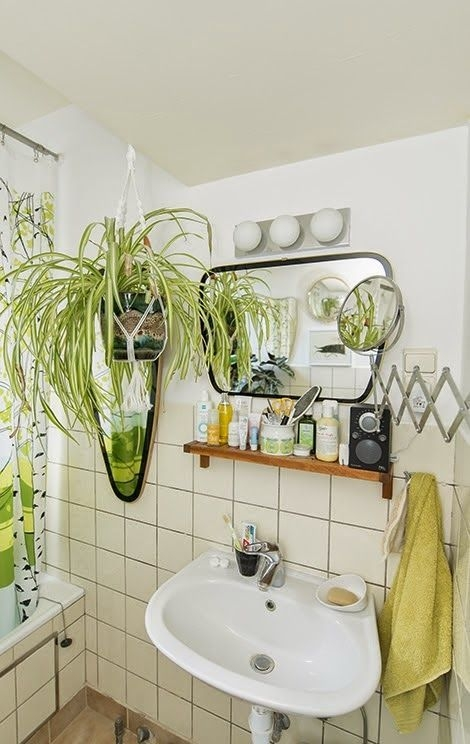 I Kind Of Like The Idea Of Plants In The Bathroom  But Kind Of Don'T Is That Gross